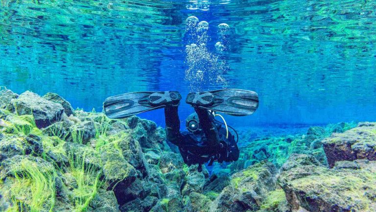 Buying scuba diving fins for beginners in 2021